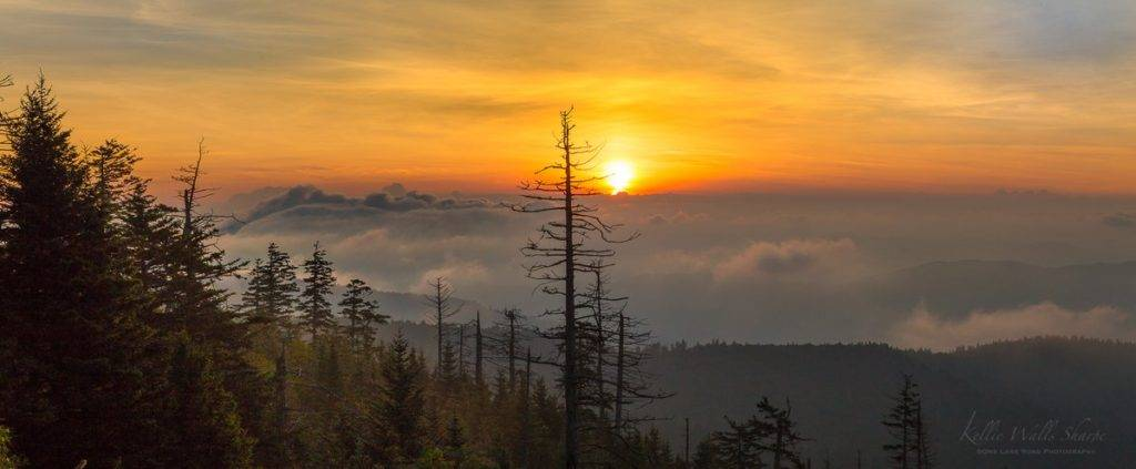 2nd Place Great Smoky Mountains of East Tennessee and North Carolina by OneLaneRoadPhoto @OneLanePhoto