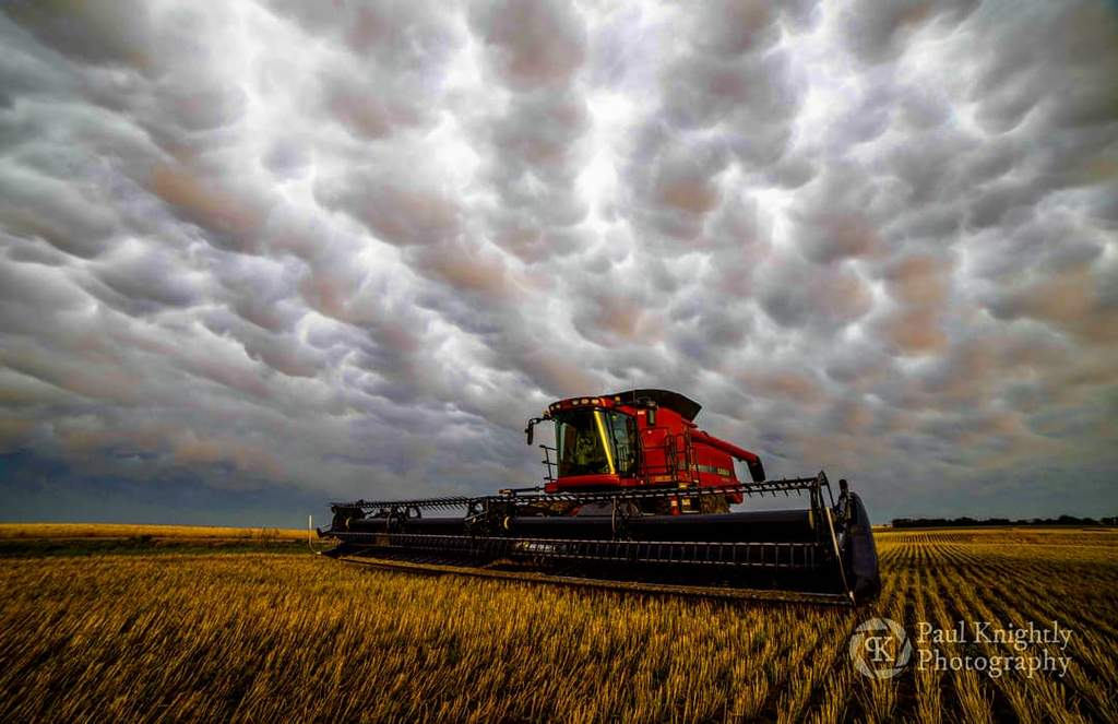 Harvest_storm._Utica_Kansas_by_Paul_Knightly_Photography_KnightlyPhoto_1024x1024