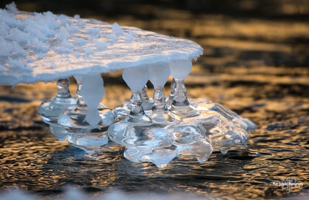 Ice_bells_along_the_Wheaton_river_by_Matt_Jacques_MattJacques_1024x1024