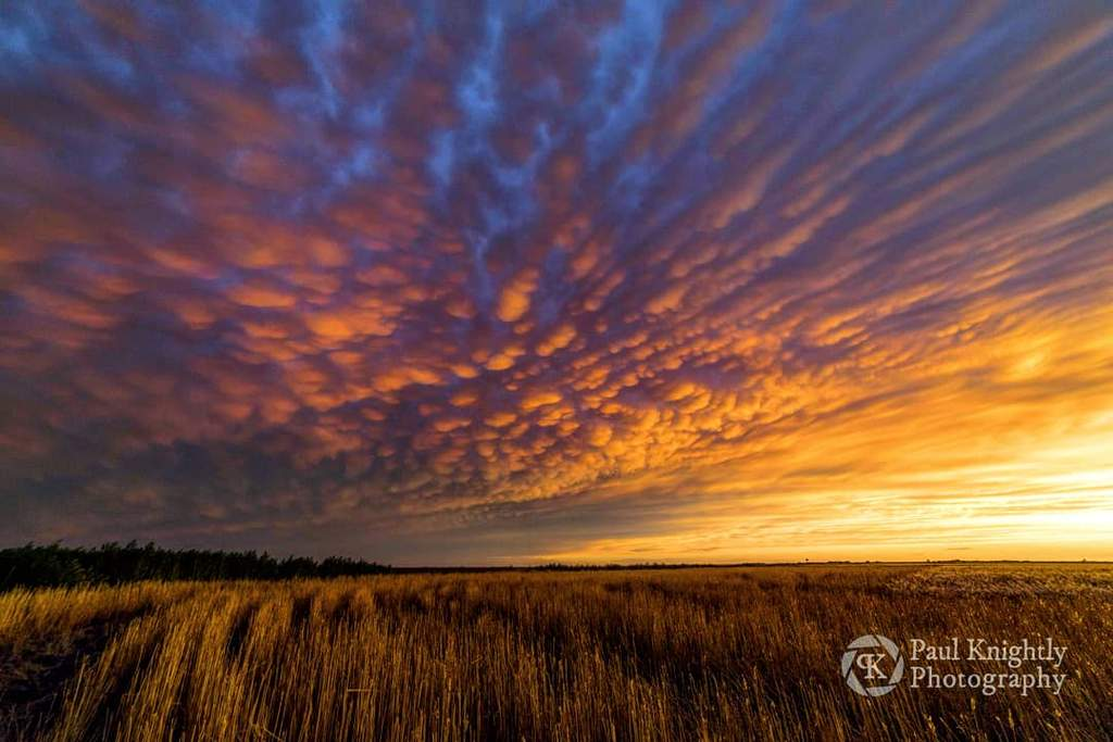 Mammatus_over_a_field_ready_for_harvest._Brownell_Kansas_Paul_Knightly_Photography_KnightlyPhoto_1024x1024