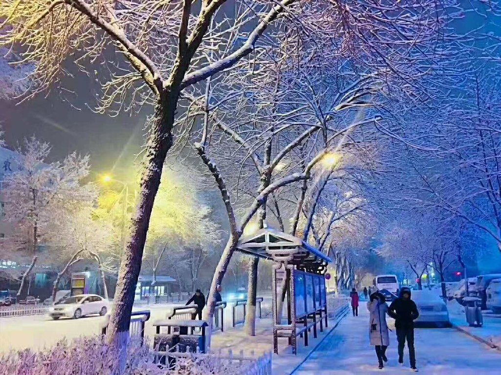 Snowflake_Harbin_city_China_by_Calon_Mertua_Idaman_LuxioMPD_1024x1024