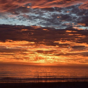 1st_Place_Winter_dawn_at_Jax_Beach_by_D_Malone_McMillan_EzekielANovel_thumb