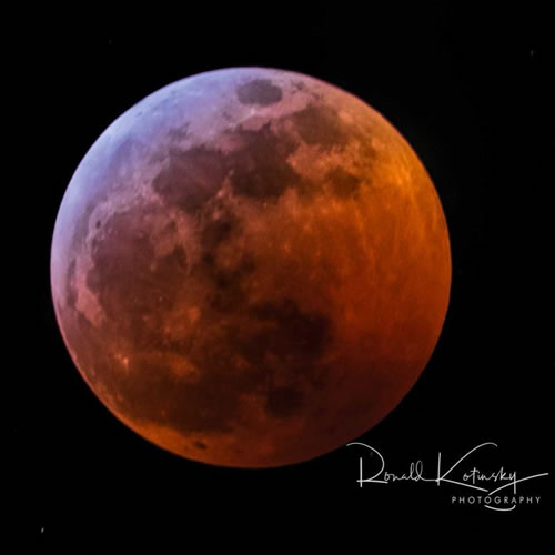 Super_Blood_Red_Wolf_Moon_-_Jan._20th_2019_-_Beverly_Hills_-_Florida_by_Ronald_Kotinsky_rkotinsky_thumb