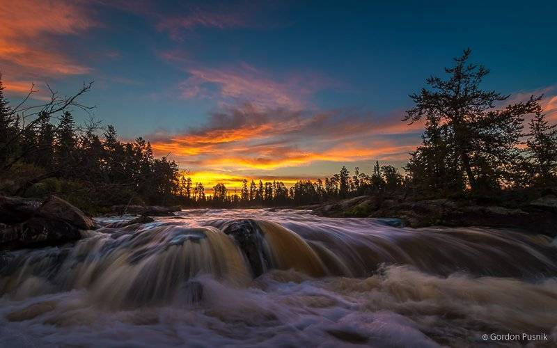 Sunrise in the boreal forest