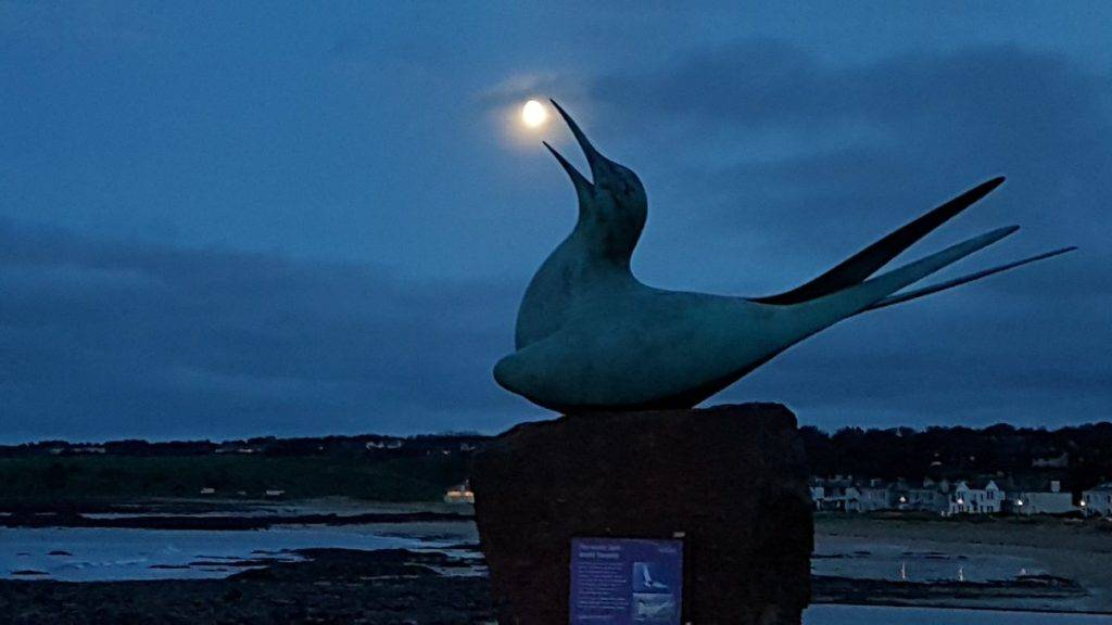 1st Place Graham Fraser @frasergj At dusk in North Berwick, East Lothian - catching a Halloween Moon
