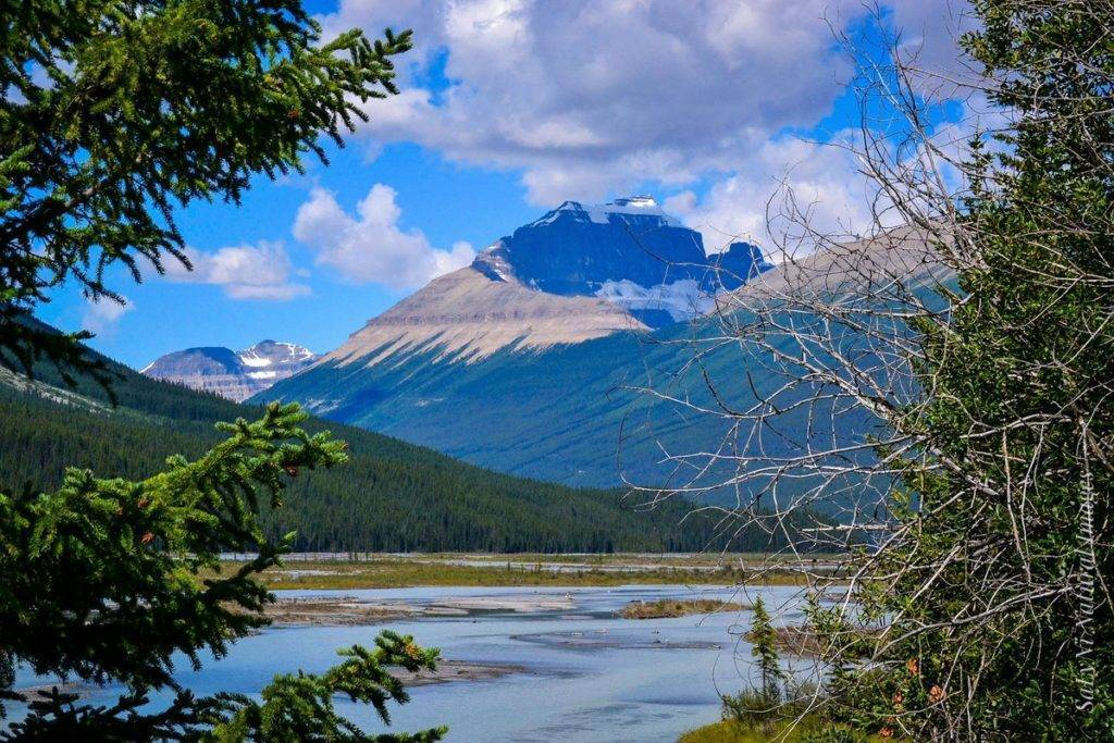 1st Place Icefields Parkway Banff National Park, Canada by Sandra Nicol @tennis45luv