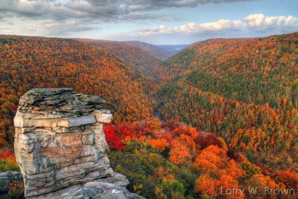 Autumn Foliage in Blackwater Canyon at Lindy Point, WestVirginia