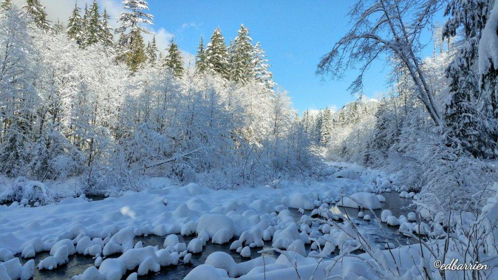 1st Place Lynn Creek in North Vancouver after a snow storm the day before by Ed Barrien @hikersimage
