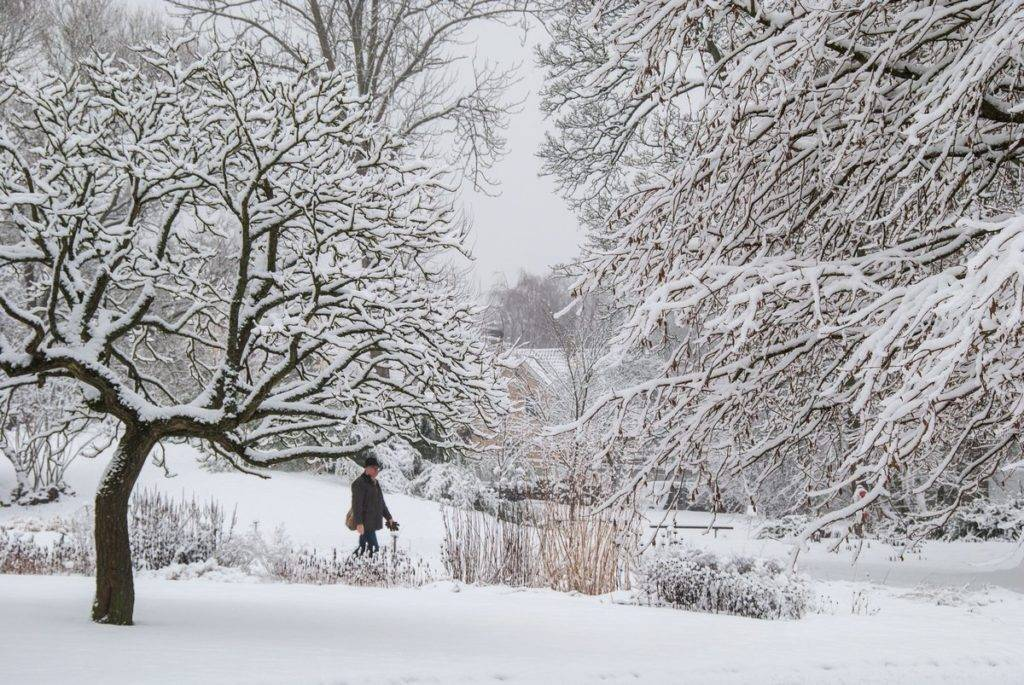 1st Place The grand finale of this year's #winter in Lund, Sweden by Lenka Peťková @Lenka_Petkova