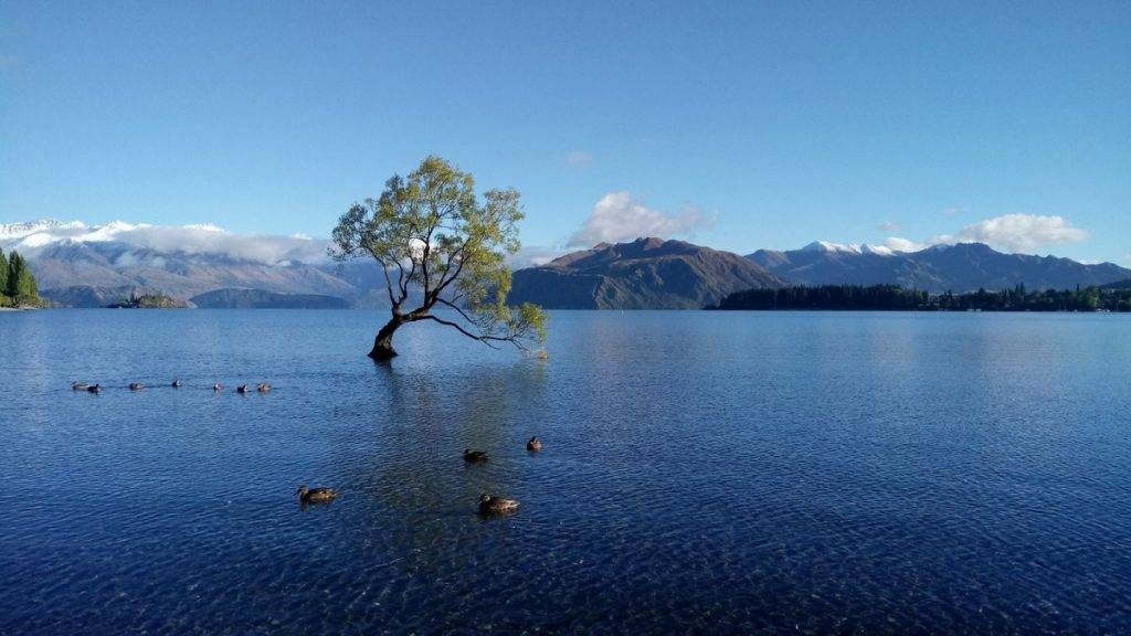 2nd Place Calm after the storm Wanaka - New Zealand by Karina Fay @KarinaFayArt