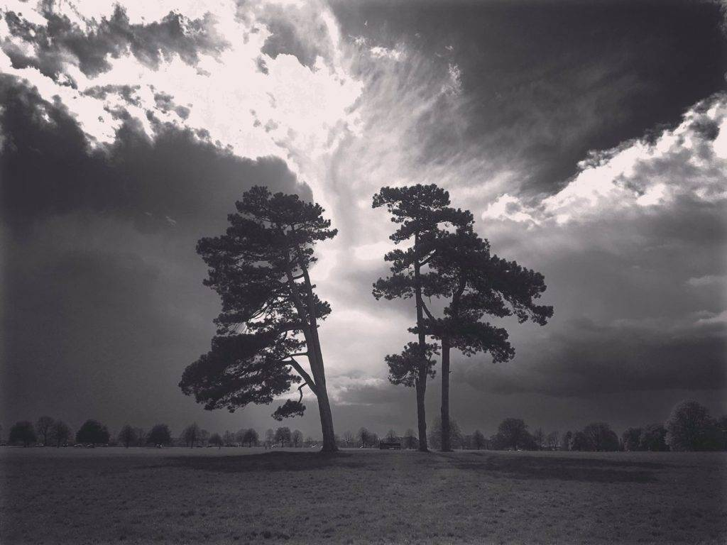 On Durdham Down - weather like this all over again. (Photo from last massive storm) - i heard tornados in Wales!