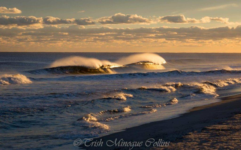 2nd Place Trish MinogueCollins @TrishMinogPhoto Golden hour on Fire Island. NY.