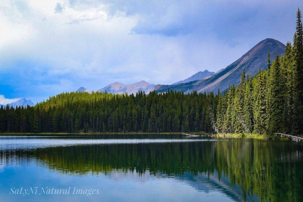 3rd Place Mona Lake Jasper National Park by Sandra Nicol @tennis45luv