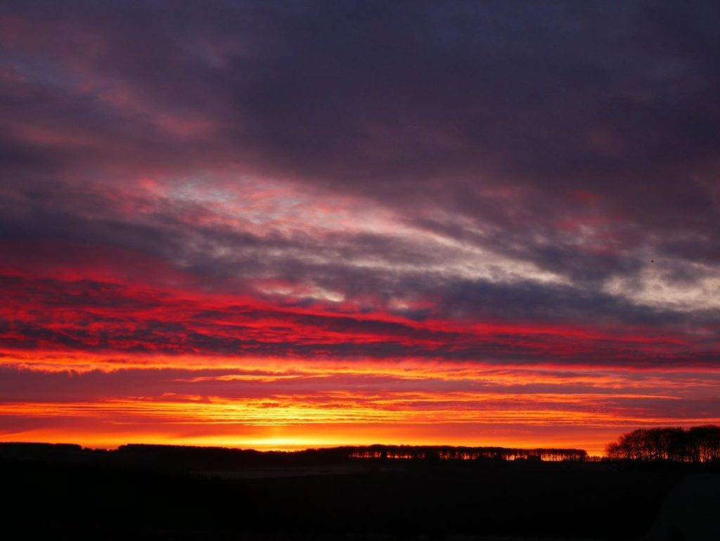 Nice sunrise from the garden by Laura Taylor @douglas_laura