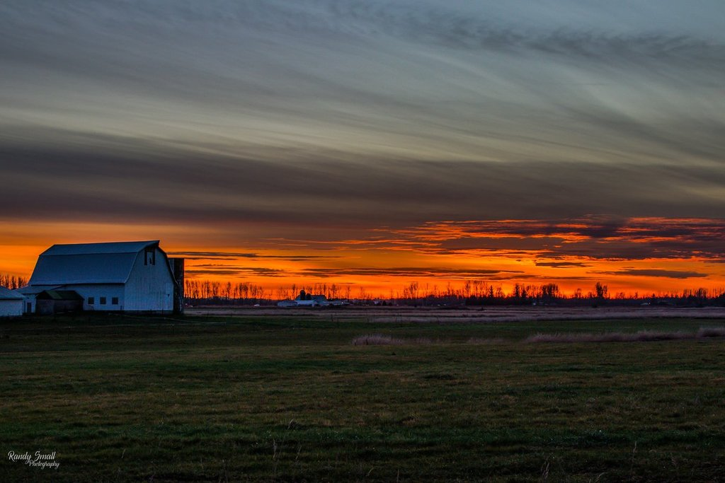 Sunset_in_Everson_WA._by_Randy_Small_RandySmall_1024x1024