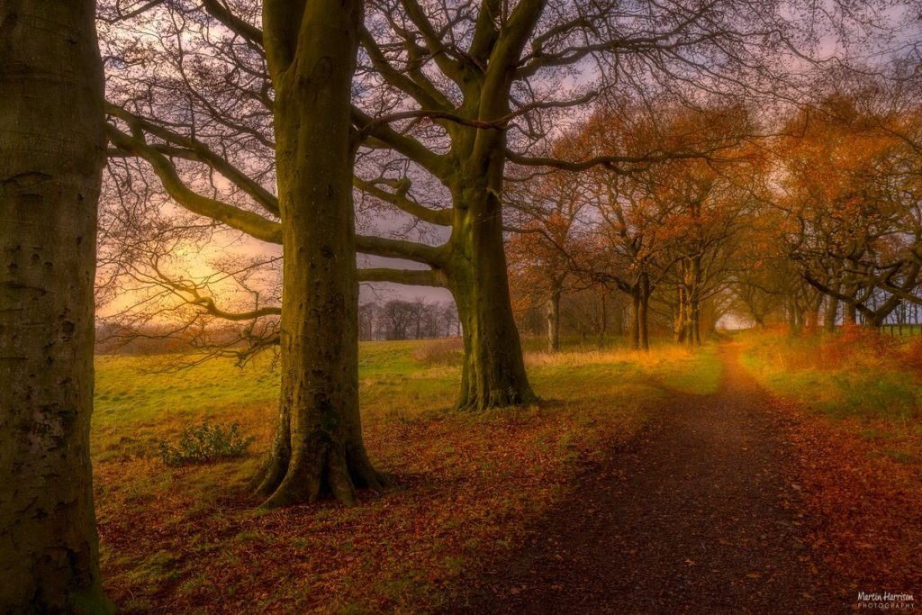The Path from Rivington Barn to SheepHouse Lane by HappyOnTheHills @HappyOnTheHills