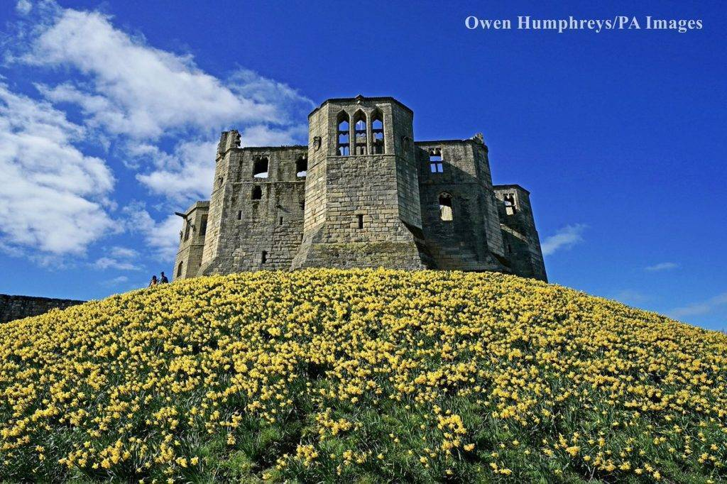 Walkworth Castle in Northumberland by Owen Humphreys @owenhumphreys1