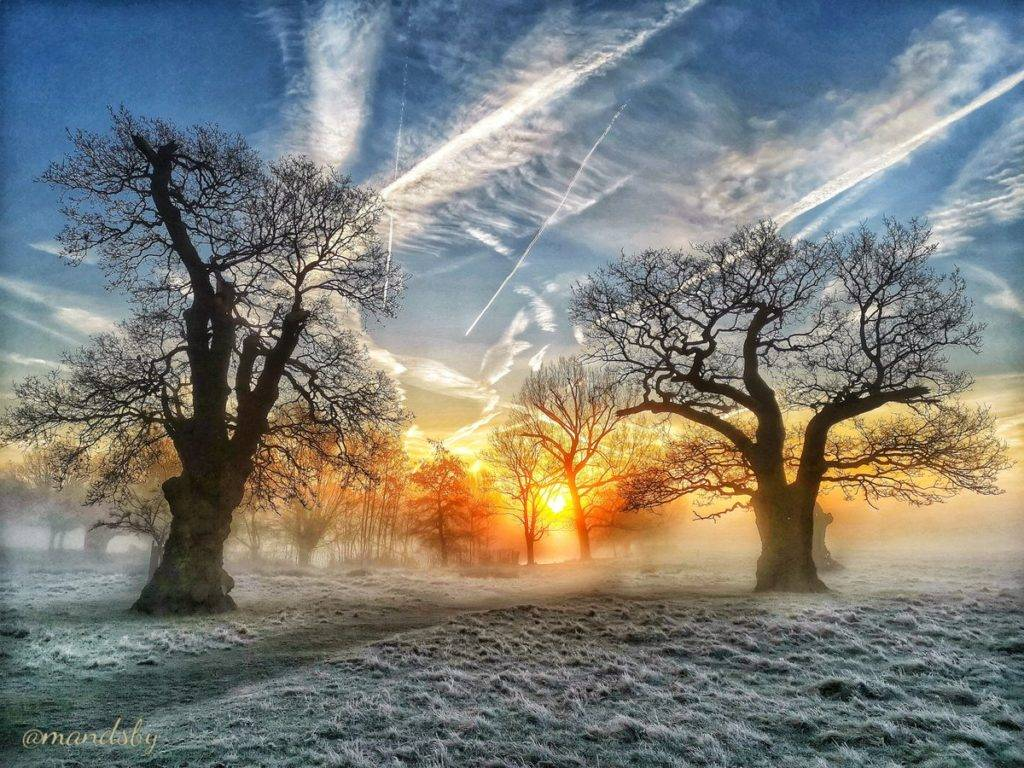 Richmond park at sunrise on valentines day by Amanda Boardman @Mandsby