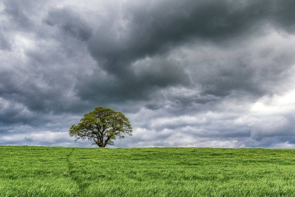 Stormy skies over tree near Eyebrook Reservoir by Richard @Photo_Rutland