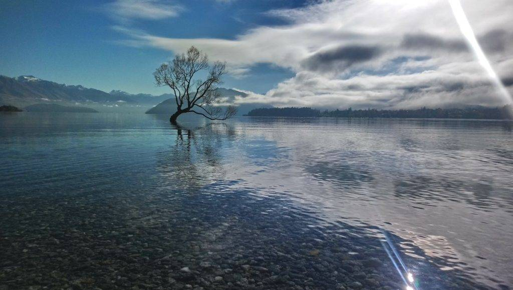 3rd Place Wanaka - New Zealand by Karina Fay @KarinaFayArt