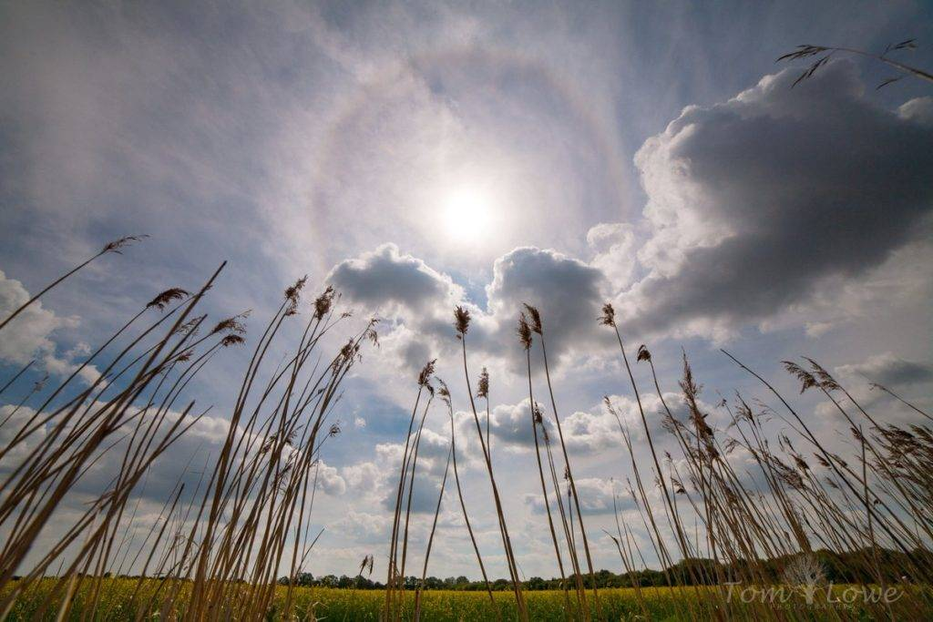 Solar halo over East Yorkshire by Tom Lowe @saloplarus