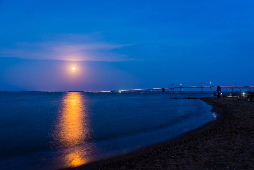 The rare Flower Blue Moon rising over the Chesapeake Bay by Jeff Norman @dcsplicer