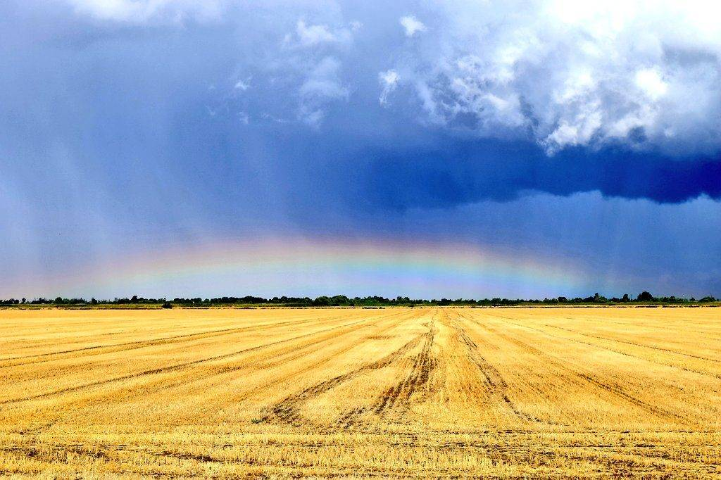 3rd Place Low altitude rainbow after a thunderstorm by Andrew Yrigollen @andyjump1118