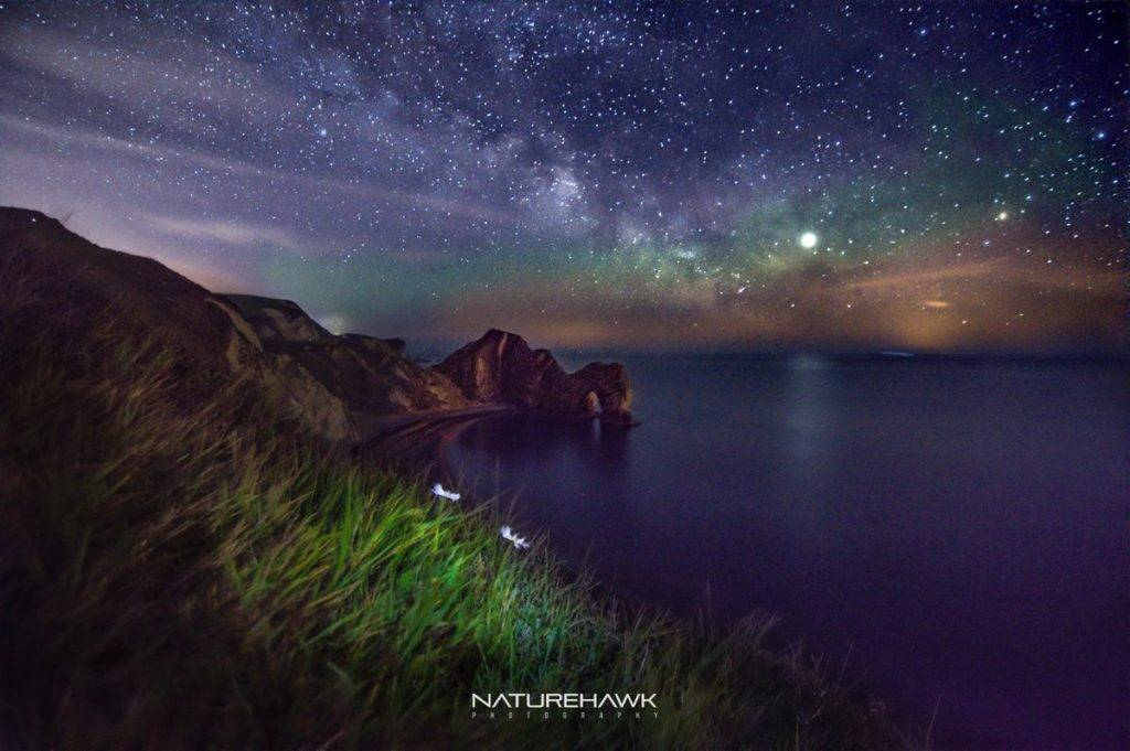 Durdle Door cultivating flora under the Milky Way by Naturehawk Photo @NaturehawkPhoto