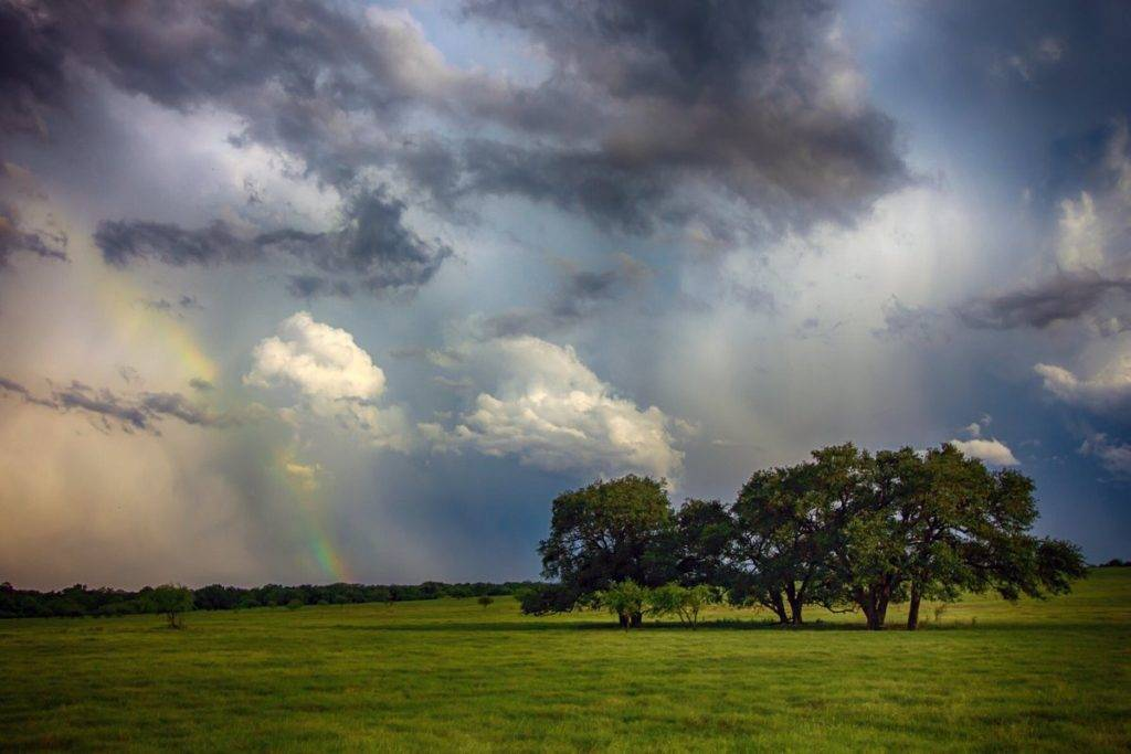 3rd Place Storm clouds over the farm fields of Texas by The Art Of Healing @DavieTempie