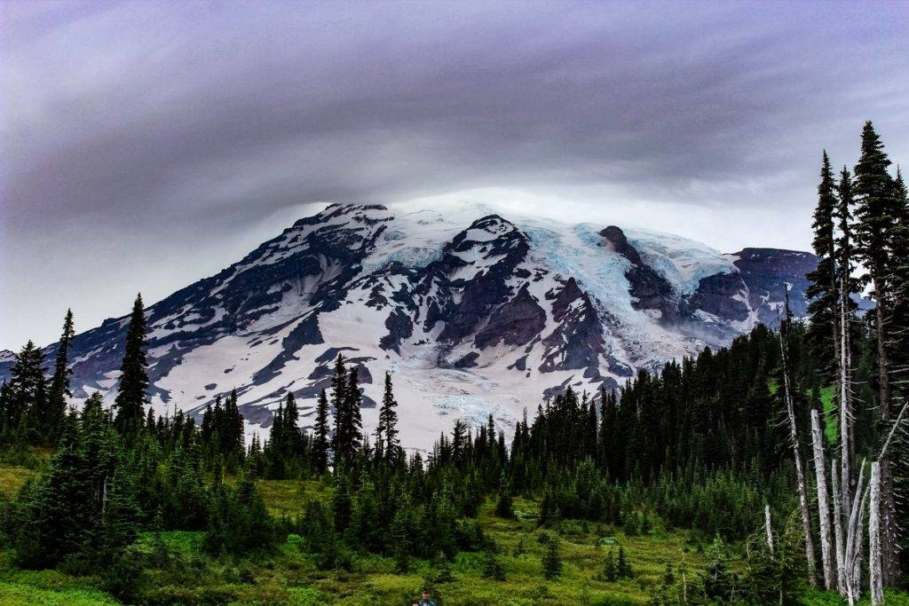 A Glacier-Covered Mount Rainier near Paradise, WA by Alex Lubbers @AlexLubbers2