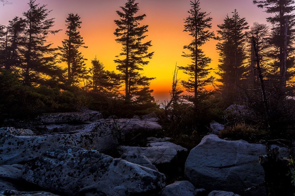 Dawn at Bear Rocks Preserve, Dolly Sods, West Virginia by Lori Coleman @lcgarbage