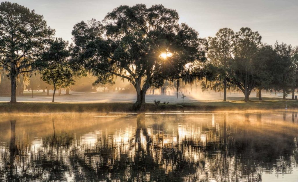 Florida in the Morning by Ronald Kotinsky @rkotinsky