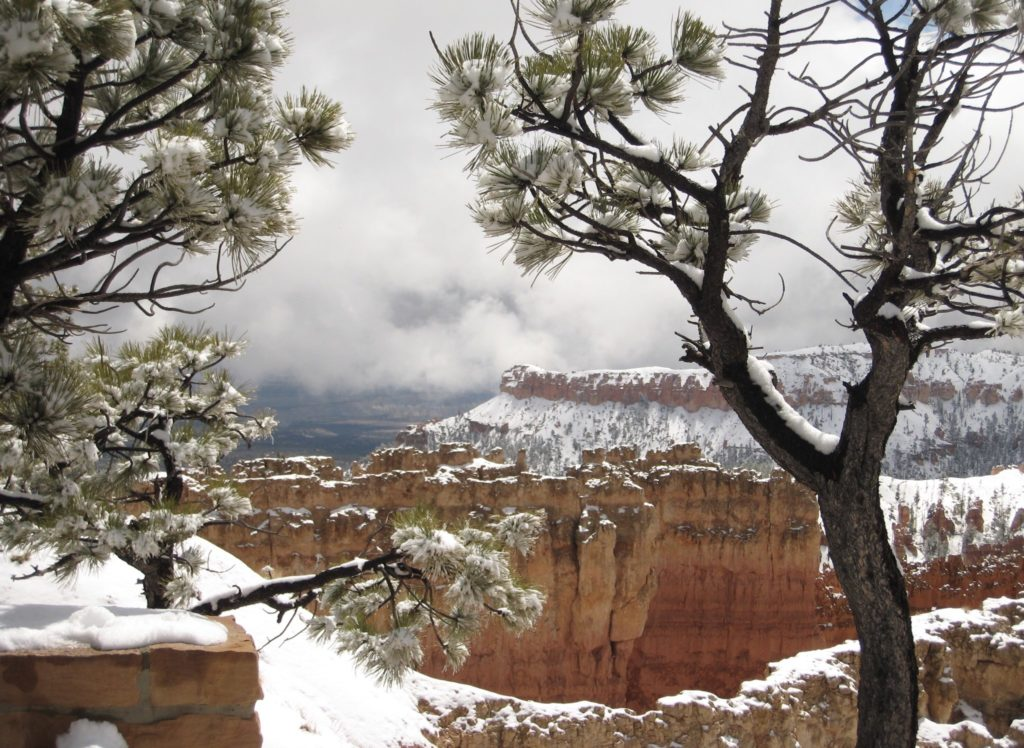 3rd Place Bryce Canyon, Utah by Robert Merle Johnson @RobertMerleJoh1