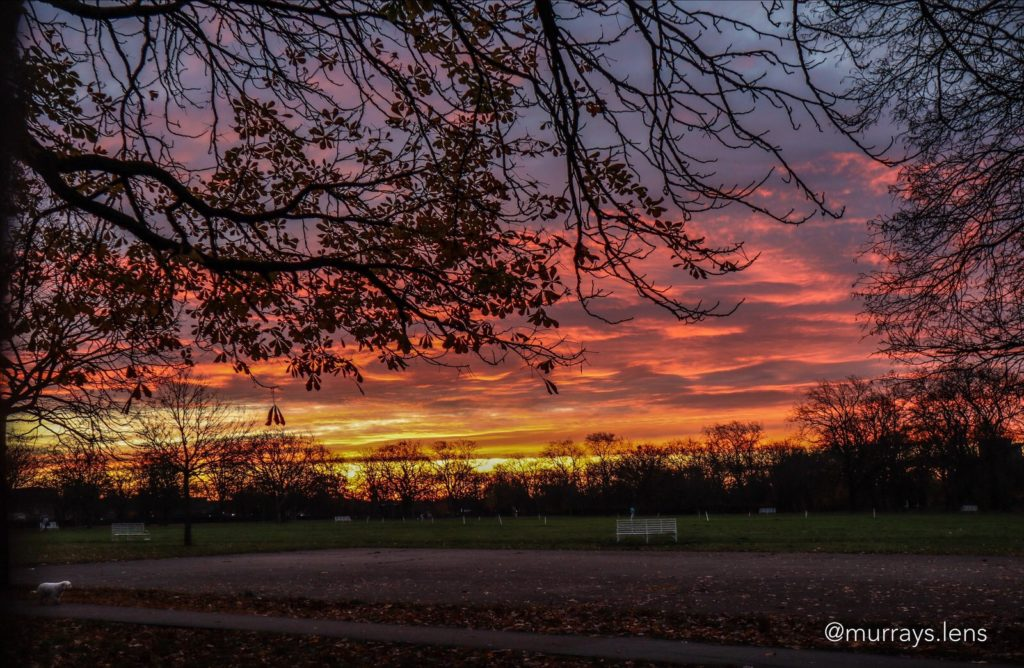 Early morning photo of West Ham Park ,London by Murrays.lens @LensMurrays