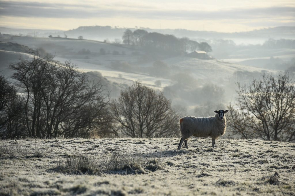 Hard frost in the valley - Hoghton, Lancashire by Wendy Love @wendylov5