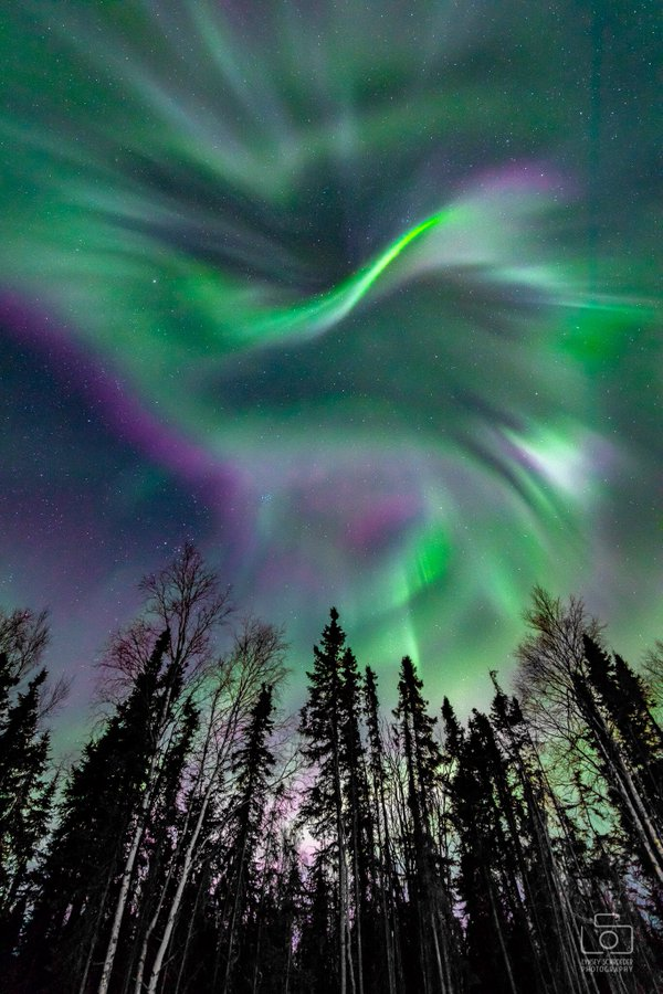 1st Place Amazing display of aurora in Fairbanks, Alaska by Lynsey Schroeder Photography @LSchroederPhoto