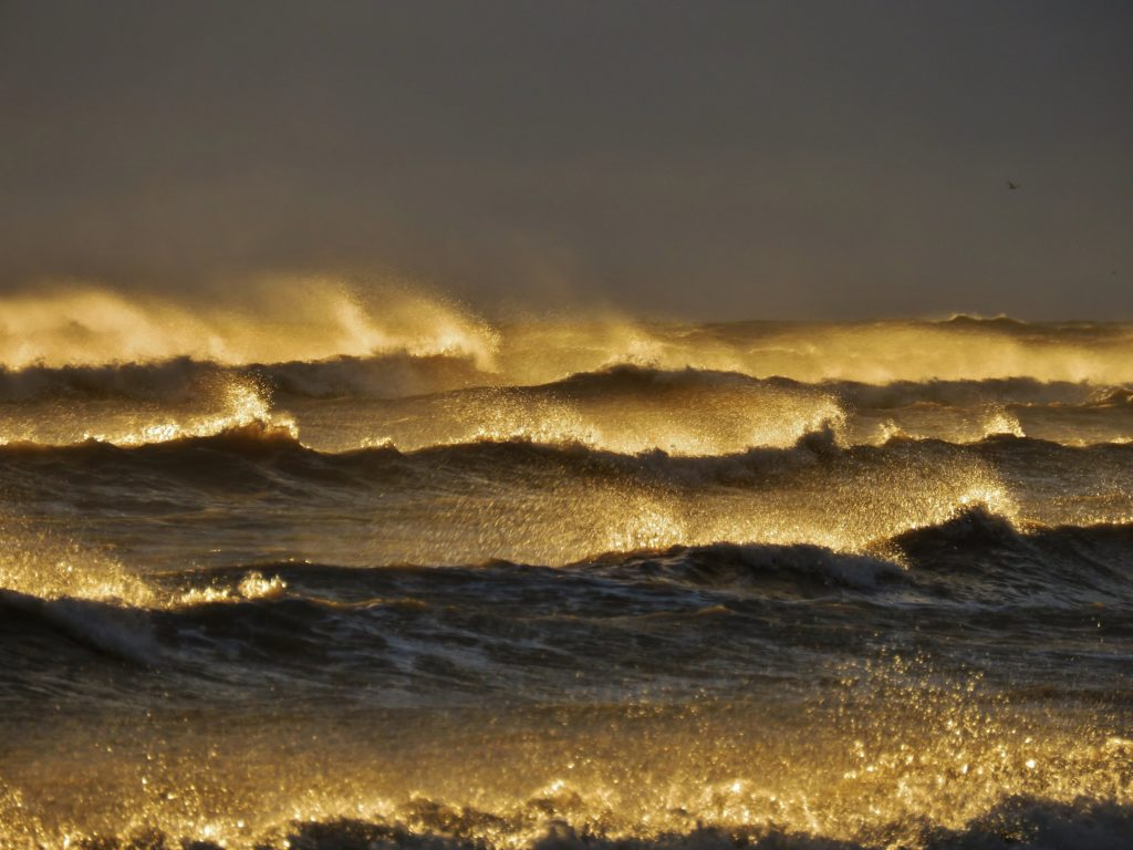 1st Place Liquid gold waves and spray as the sun illuminate a windy Greatstone beach by Ian Hook @ianhook66