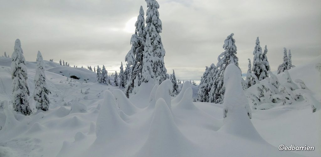 3rd Place Winter wonderland on Mt. Seymour by Ed Barrien @hikersimage