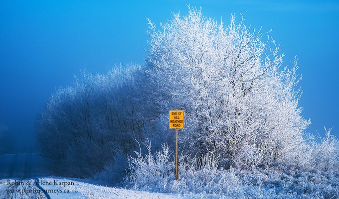 Frost and fog in the Thickwood Hills, Saskatchewan, Canada by Robin&Arlene Karpan @KarpanParkland