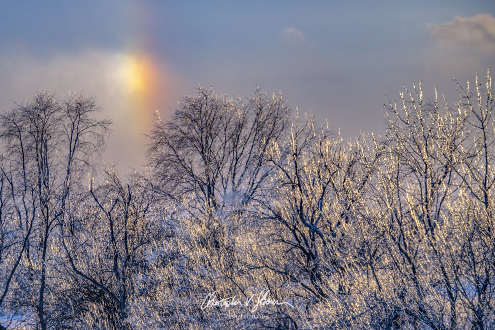 Sundog and Ice Covered Trees Eastern Iowa by Christopher V. Sherman Photography @cvsherman