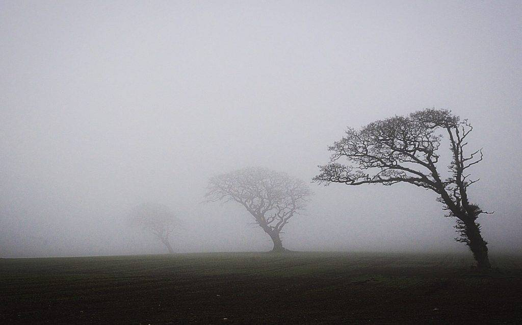 Thick fog envelopes North Wales by Ian Cooper @icphotography