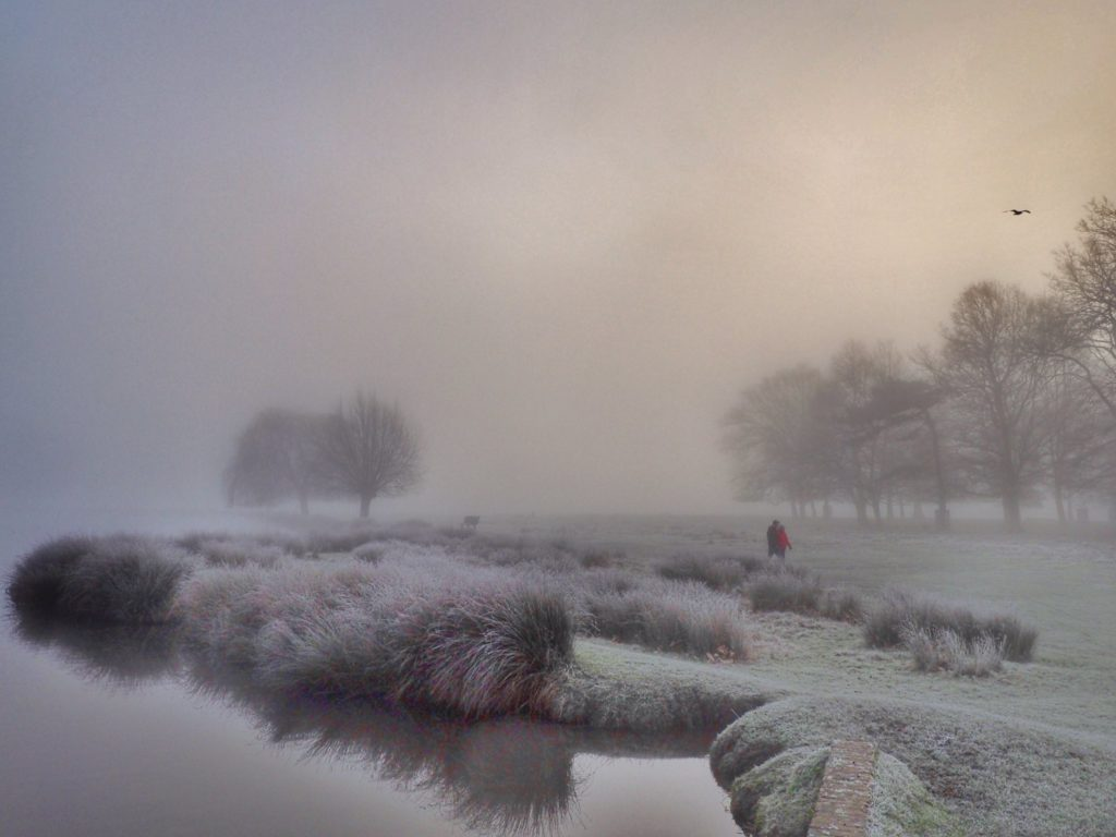 2nd Place A frosty foggy morning at the Leg of Mutton Pond Bushy Park Teddington by Ruth Wadey @ruths_gallery