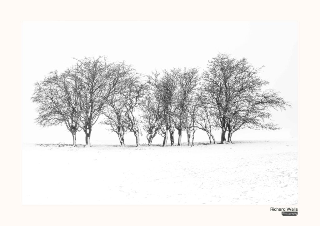 Snow in the Yorkshire Dales by richard @oldschoolmuker