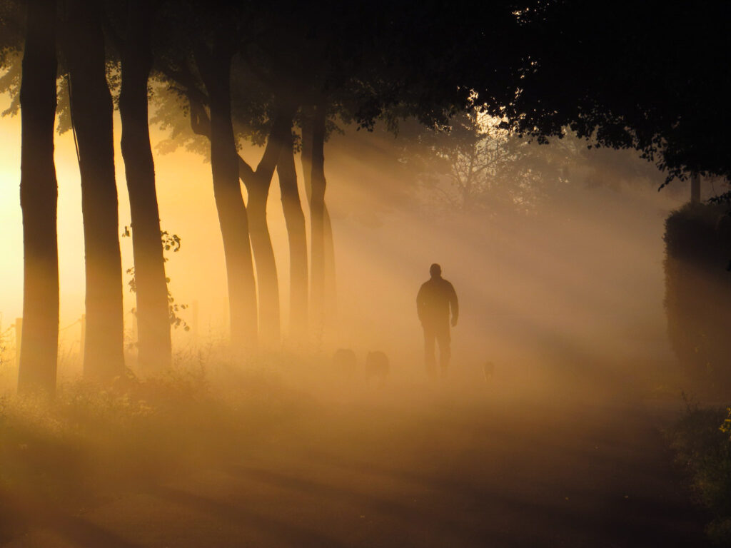 2nd Place Walking into a magic sunrise in the Netherlands by Carina Lichtenberg @70_carina