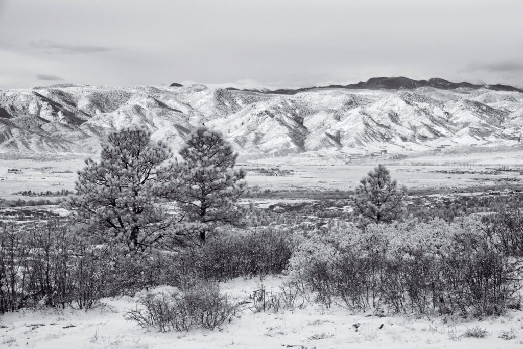 3rd Place Snowy morning in Castle Pines, Colorado by Michael Ryno Photo @mnryno34