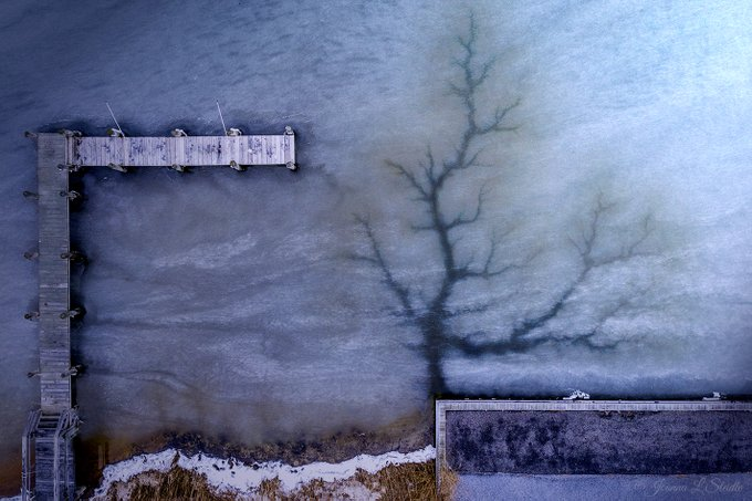 2nd Place Frozen Life. From the Water Mill Beach Club, Water Mill, NY by Joanna L Steidle @HamptonsDrone