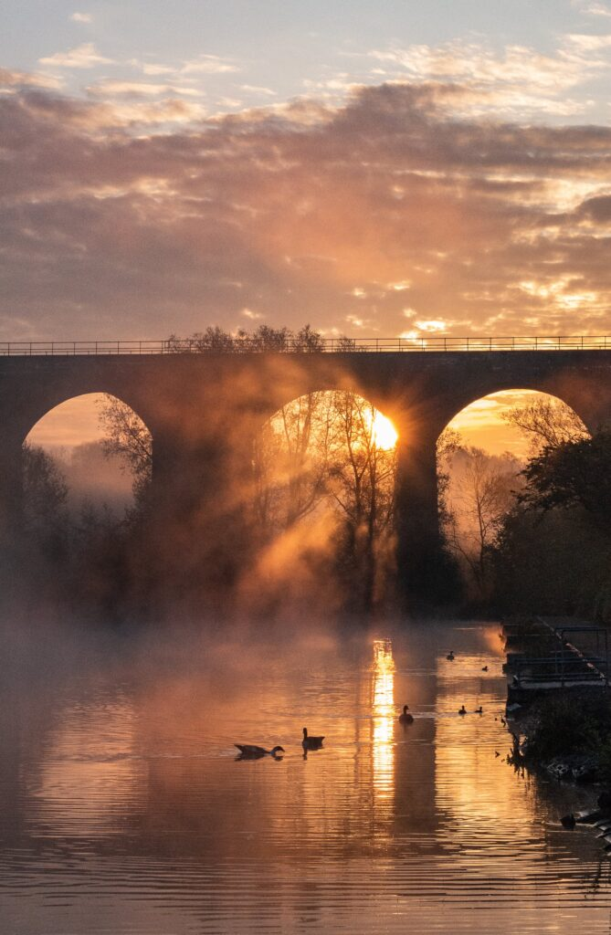 3rd Place A misty dawn chorus in Reddish Vale, Stockport by One-Eyed-Focus @OneEyedFocus