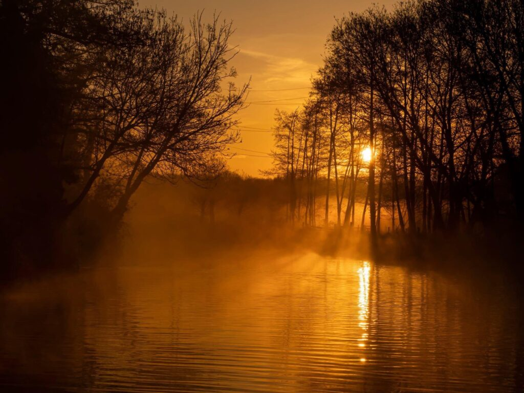 3rd Place Misty sunrise, River Wey in Guildford by MarkFullerPhotography @MarkFullerPhot1